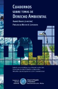 Cuadernos Derecho Ambiental N1.pdf